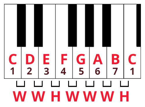 Keyboard diagram of the C major scale with note names and scale degree numbers labelled. CDEFGAB is 1234567. Distance between each key is labelled as whole step (W) or half step (H).