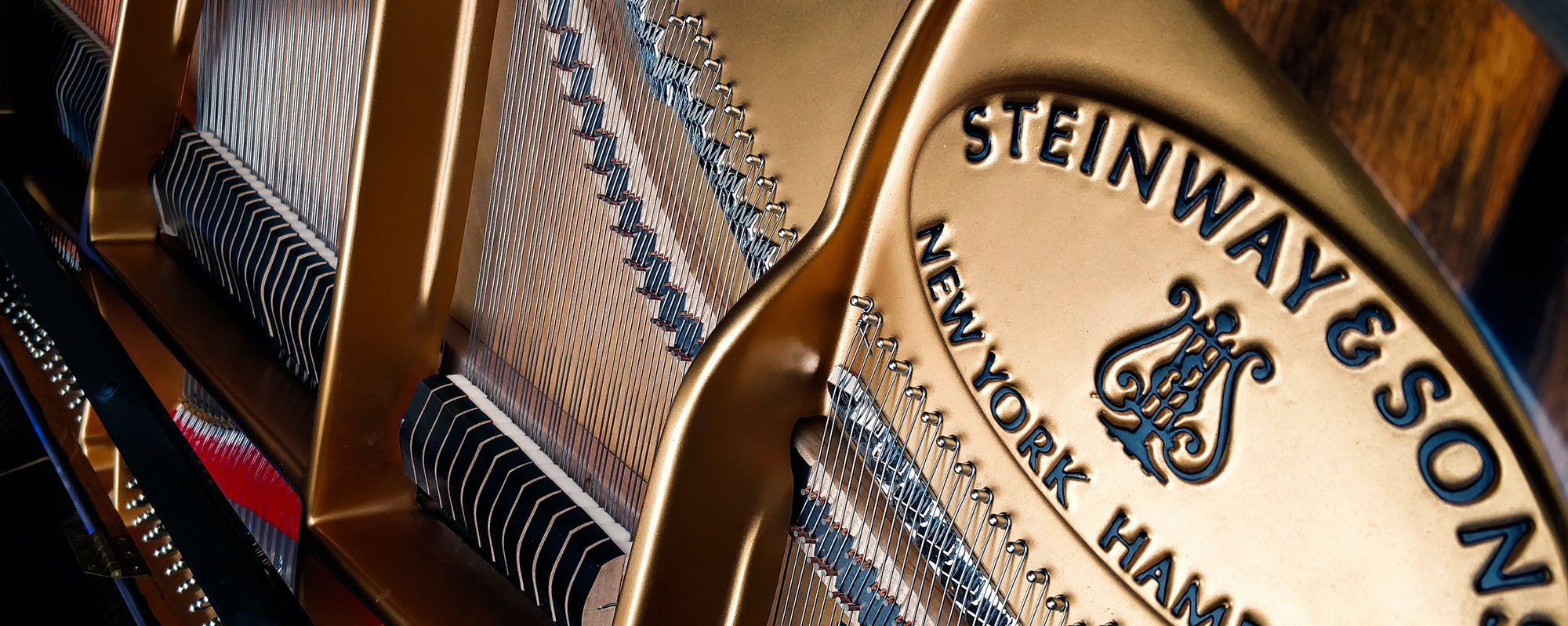 Close-up of the inside of a grand piano's strings - Steinway and Sons label.