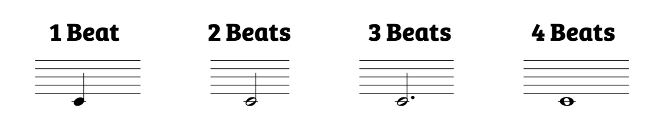 Different note values. Quarter note is worth 1 beat and colored in. Half note is not colored in worth 2 beats. Dotted half note is half note with dot worth 3 beats. Whole note is not colored in note without stem, worth 4 beats.